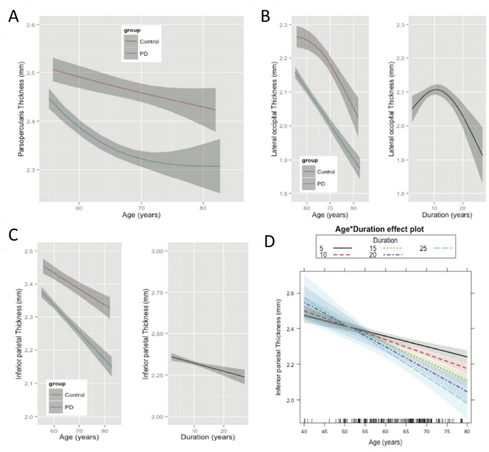 Linear and Curvilinear Trajectories of Cortical Loss with