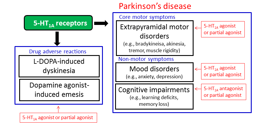 Improving The Treatment Of Parkinson S Disease A Novel